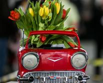 Телеканал «Авто Плюс» подводит итоги выставки технического антиквариата