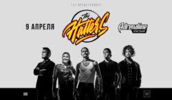 Этой весной The Hatters дадут концерт при поддержке телеканала «Авто Плюс»!